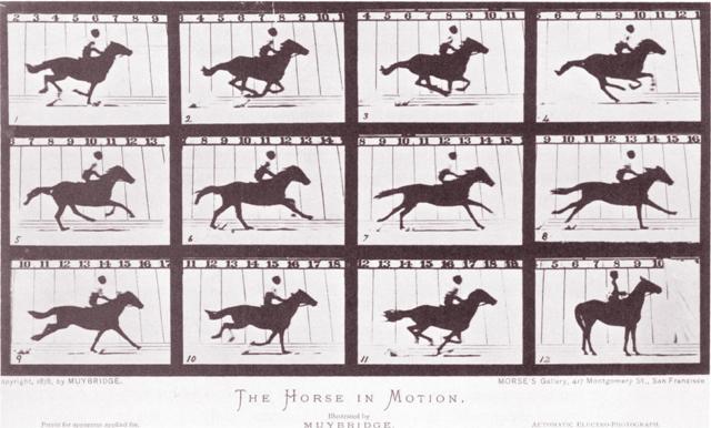 Salah satu pemantik perkembangan sinema: rekaman gerakan kuda oleh Eadweard Muybridge.